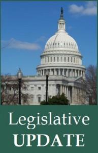 Legislative update for NL